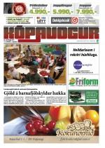 14. tbl. 1. árgangur 25. október 2013