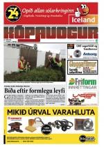 11. tbl. 2. árgangur 20. júní 2014